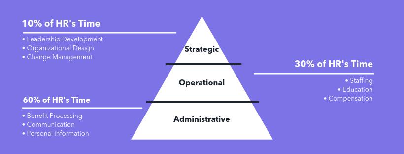 HRM pyramid role