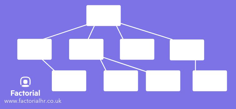 organisation chart vertical